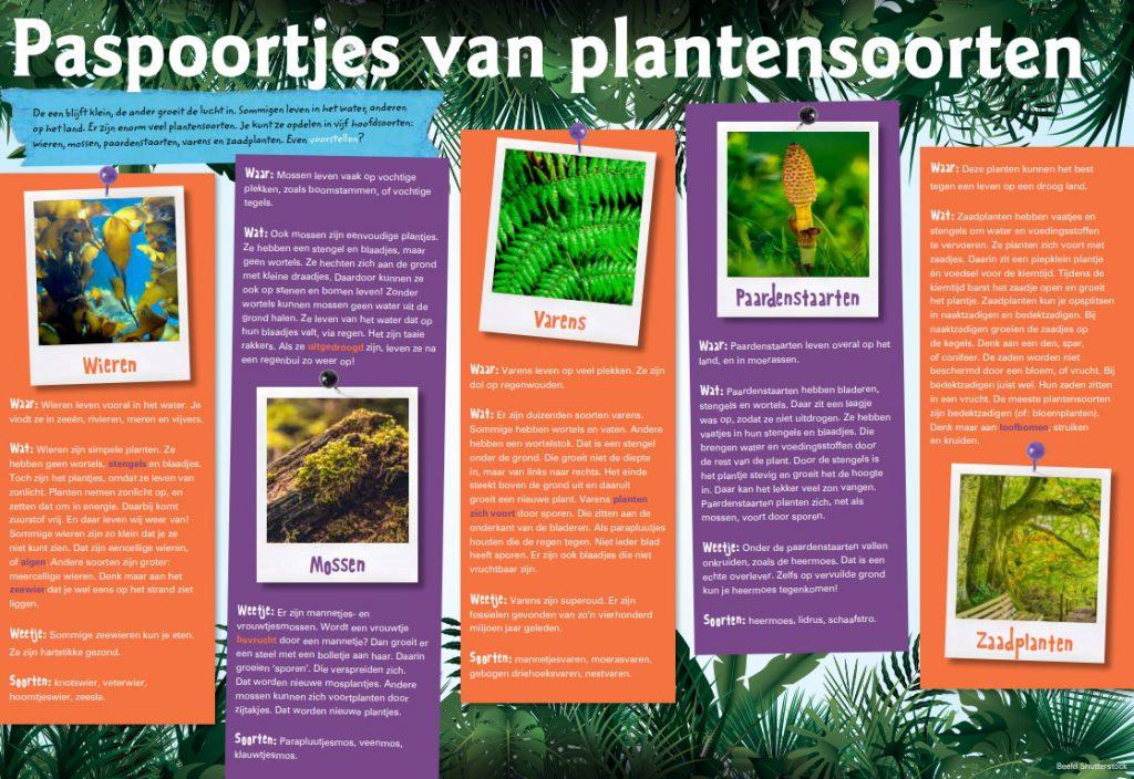 rijke teksten - plantensoorten